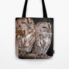 Tawny Owls in Nature Tote Bag