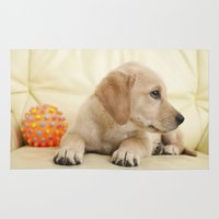 labrador Area & Throw Rugs featuring Labrador puppy by Elisabeth Coelfen