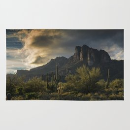Rainy Day in the Superstitions Rug
