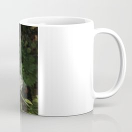 Nothing is Coming Up Daisies Coffee Mug