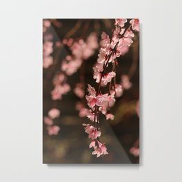 Simply Spring Metal Print