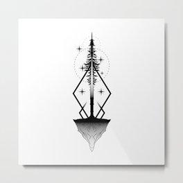 Ascension Metal Print