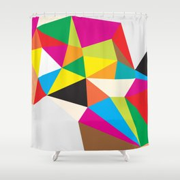 Tumble Shower Curtain
