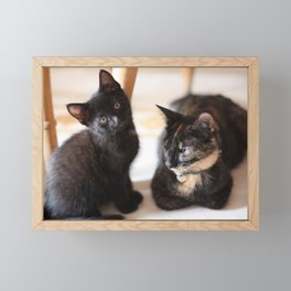 Mama Cat and her Pride of Joy Framed Mini Art Print