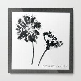 008/100: DESERT CHICORY [100 Day Project 2020] Metal Print