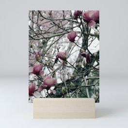 Magnolia Bloom Mini Art Print