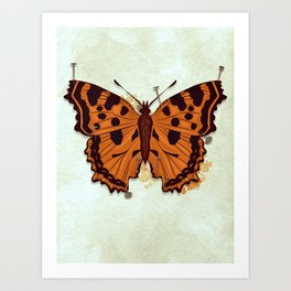 Butterfly: Pinned Down Art Print