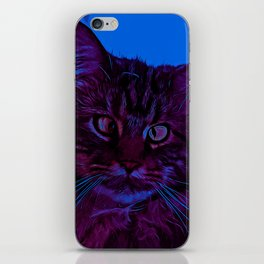 squinting maine coon cat vector art night from day iPhone Skin