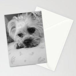 Meggy Moo Stationery Cards