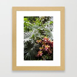 Tropical Vibes & Tropical Fauna Framed Art Print