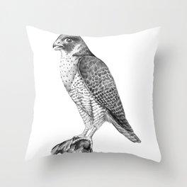 Peregrine Halcon Throw Pillow