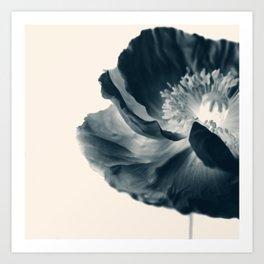 Cyan Poppy #1 Art Print