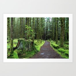All covered with green moss magic forest Art Print