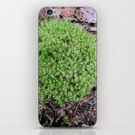 The Fairy's Futon iPhone Skin