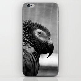 Grey Parrot iPhone Skin