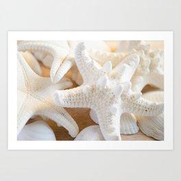 White Starfish Art Print