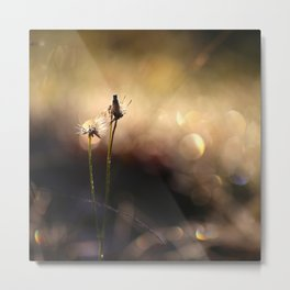 Plants together in Nature Light Bokeh #decor #society6 Metal Print