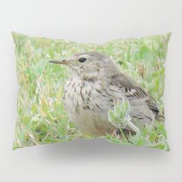 Pipit on the Lawn Pillow Sham