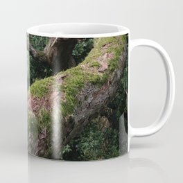 Enchanted Woodland Tree Branch UK English Countryside Coffee Mug