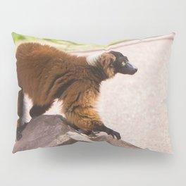 Varecia Rubra Pillow Sham