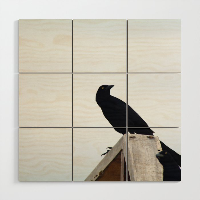 Bird collection _03 Wood Wall Art