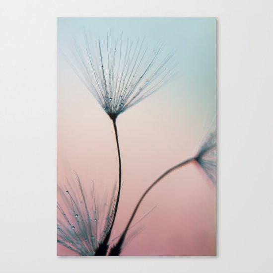 sprinkles of love Canvas Print