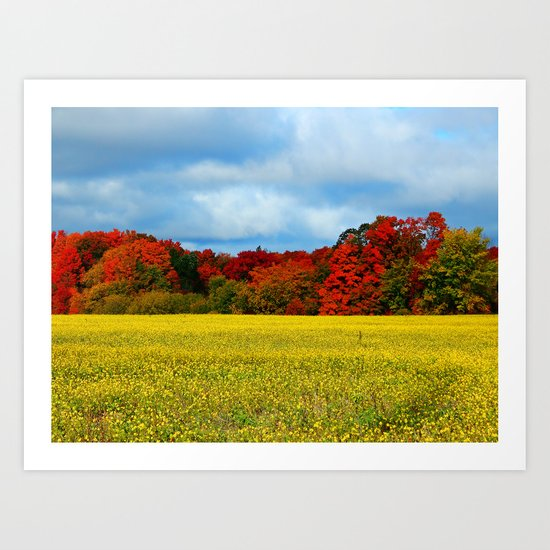 Blue Red Yellow Green and White Art Print
