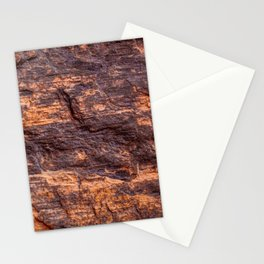 Closeup of petrified wood from New Mexico Stationery Cards