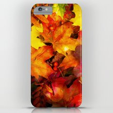 AUTUMN 3 Slim Case iPhone 6 Plus