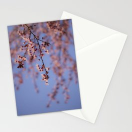 Prunus Stationery Cards