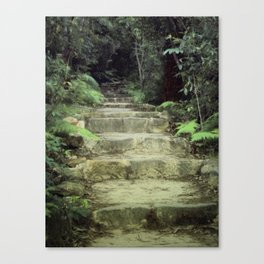 Steps to losing yourself Canvas Print