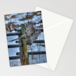Dive, Dive, Dive! - Great Grey Owl Hunting Stationery Cards