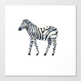 zebra draw abstract Canvas Print