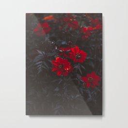 Beautiful Dark Red Sensual Romantic Flowers With Dark Leaves Metal Print