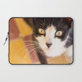 Desert Cat Laptop Sleeve