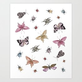 butterlies and insects Art Print
