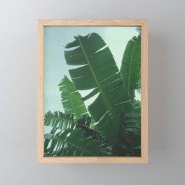 Tropical Evening Framed Mini Art Print
