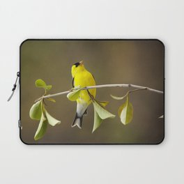Goldfinch Laptop Sleeve