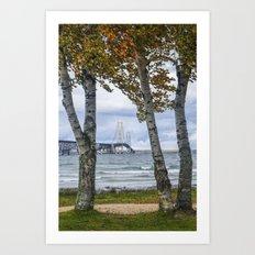 The Mackinaw Bridge in Autumn by the Straits of Mackinac with Birch Trees Art Print