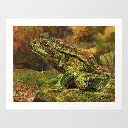 Wildlife Frog Art Print