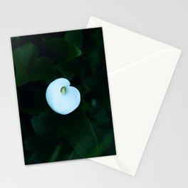 Сalla Stationery Cards