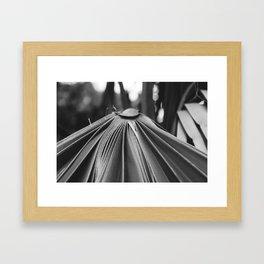 Cayman Islands I Framed Art Print