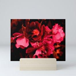 Seeing red Mini Art Print