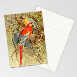 Royal Natural History 1893-1896 - JCK (Macaws) Stationery Cards