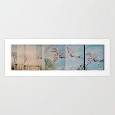 Blossom Pano Art Print