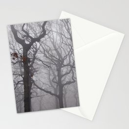 Last day of autumn Stationery Cards