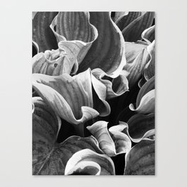 Leafing on the Midnight Train Canvas Print