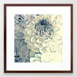Creamy Turquoise And Pink Dahlias Framed Art Print