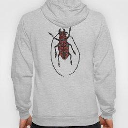 Striped Beetle Hoody