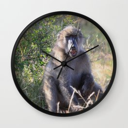 """Hey, whassup,"" said the Baboon Wall Clock"